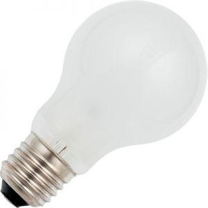 Normaal 15 watt Mat E27
