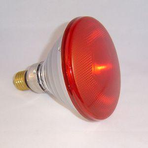Infrarood lamp Par 38 rood 150