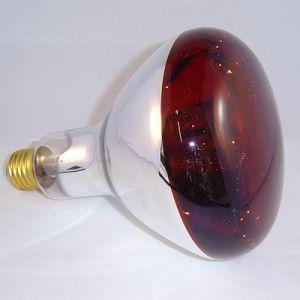 Infrarood lamp R125 rood 250